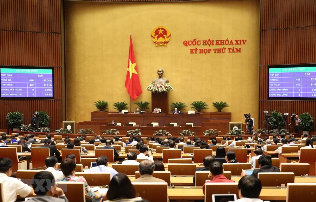 Các đại biểu Quốc hội biểu quyết thông qua Luật Thư viện với 442/446 đại biểu tán thành, đạt tỷ lệ 91,51%. (Ảnh: Dương Giang/TTXVN)