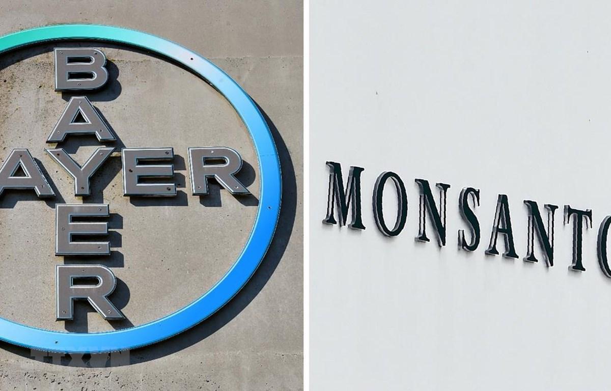 Biểu tượng Bayer và Monsanto. (Ảnh: AFP/TTXVN)