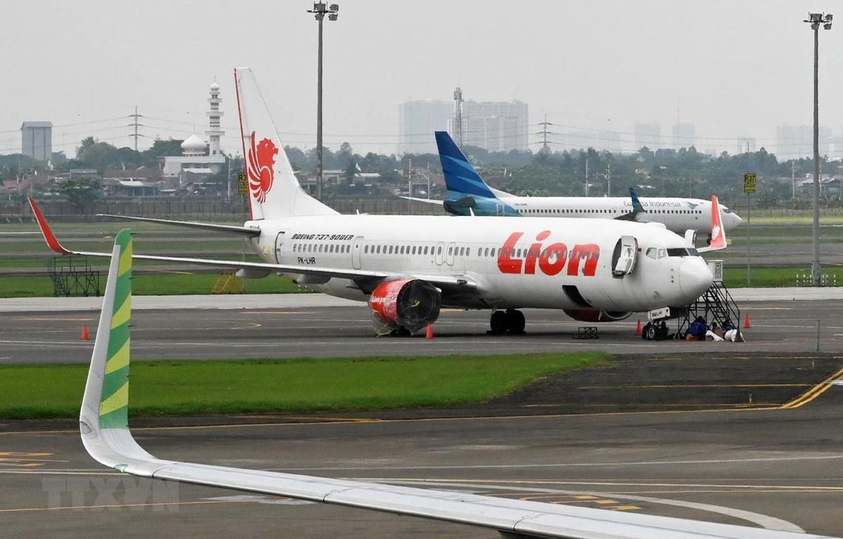 Máy bay của hãng hàng không giá rẻ Lion Air tại sân bay quốc tế Sukarno-Hatta ở ngoại ô Jakarta của Indonesia. (Ảnh: AFP/TTXVN)