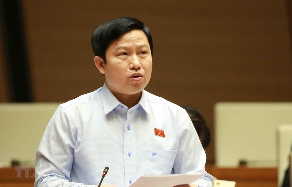 Đại biểu Quốc hội tỉnh Tiền Giang Lê Quang Trí phát biểu ý kiến. (Ảnh: Doãn Tấn/TTXVN)