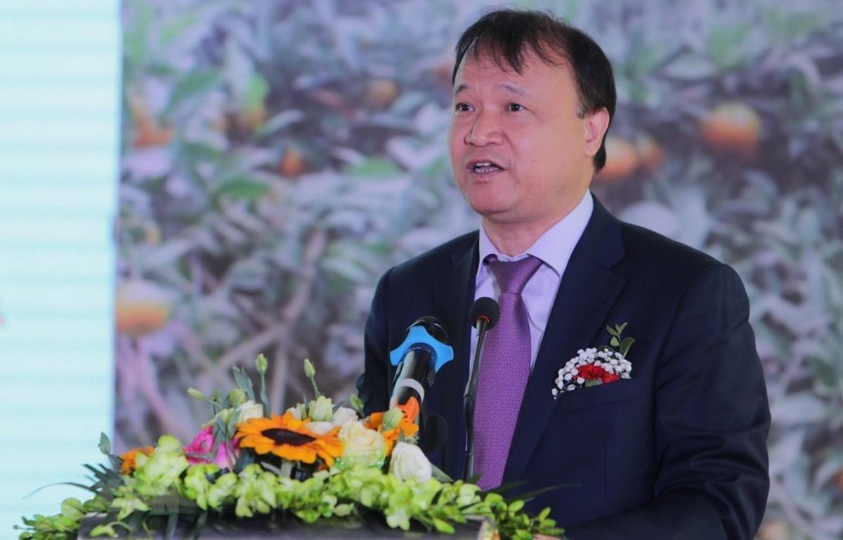 Ông Đỗ Thắng Hải, Thứ trưởng Bộ Công Thương phát biểu tại buổi lễ. )Ảnh: Thành Đạt/TTXVN)