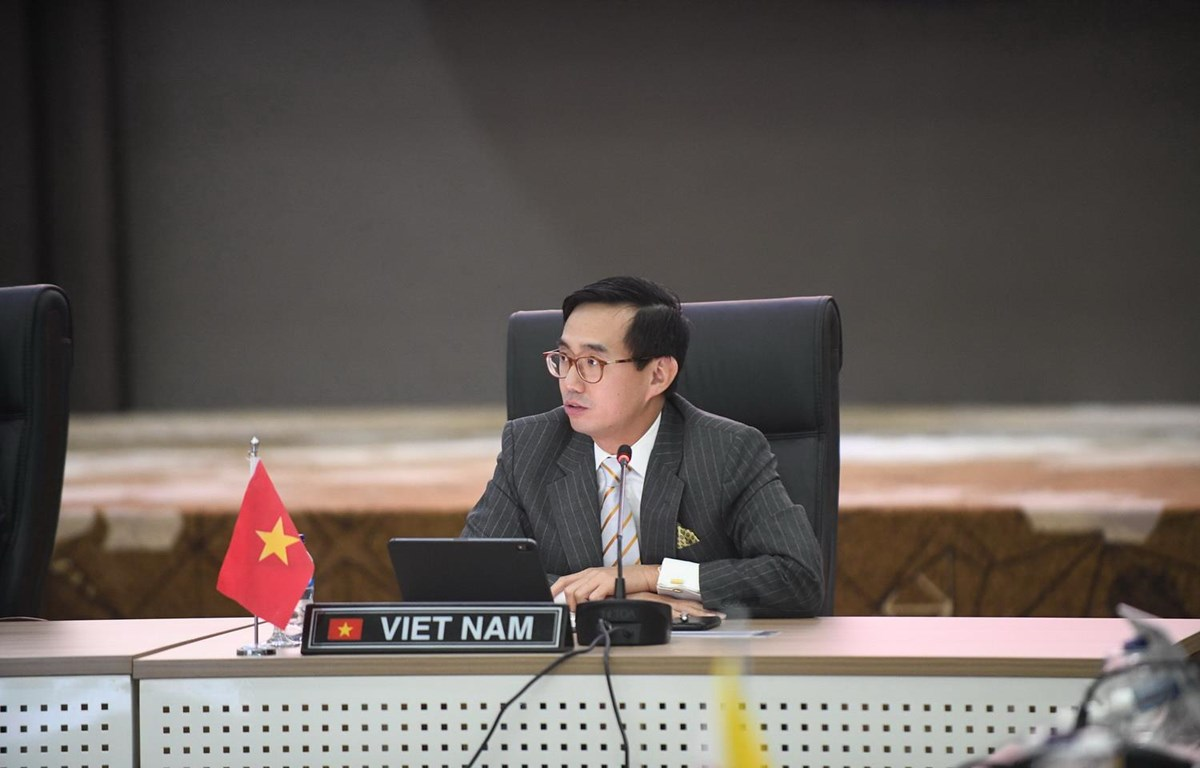 Đại sứ, Trưởng Phái đoàn Thường trực Việt Nam tại ASEAN Trần Đức Bình. (Ảnh: Hữu Chiến/Vietnam+)