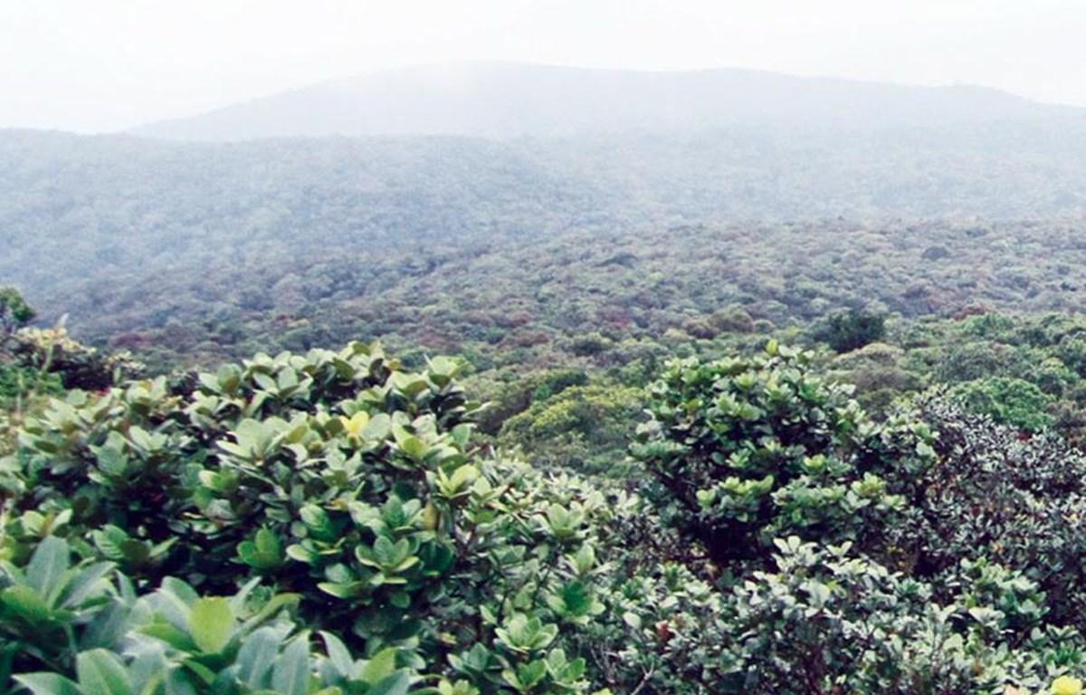Toàn cảnh vườn quốc gia Kon Ka Kinh được ngắm từ trên cao.