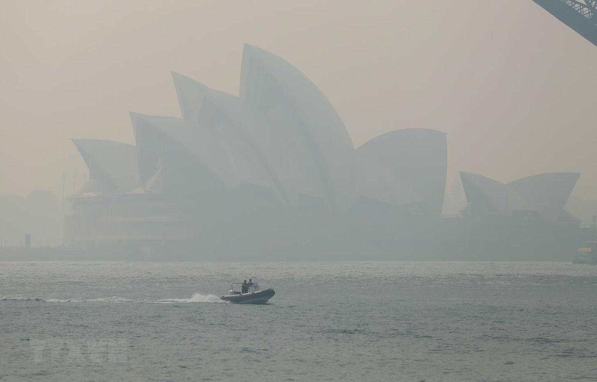 Khói bụi từ các đám cháy rừng bao phủ thành phố Sydney của Australia ngày 21/11 vừa qua. (Ảnh: THX/TXTVN)