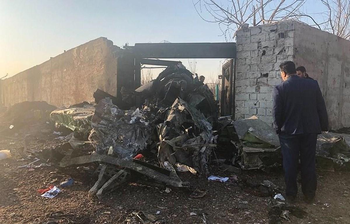 Mộ bộ phận của máy bay gặp nạn. (Nguồn: Daily Mail)