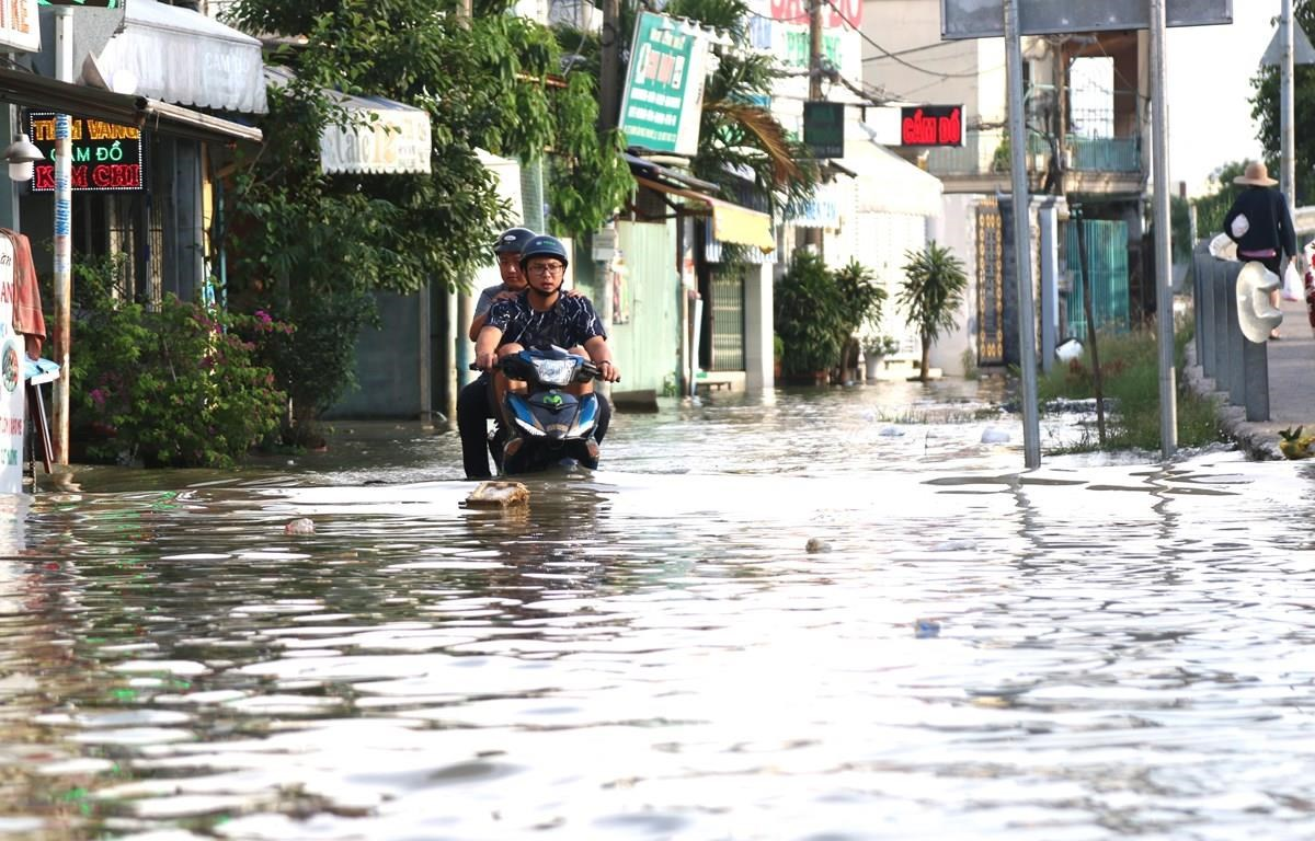 Triều cường gây ngập sâu tại khu vực cầu Phú Xuân, tiếp giáp huyện Nhà Bè và quận 7, TP.HCM. (Ảnh: Trần Xuân Tình/TTXVN)