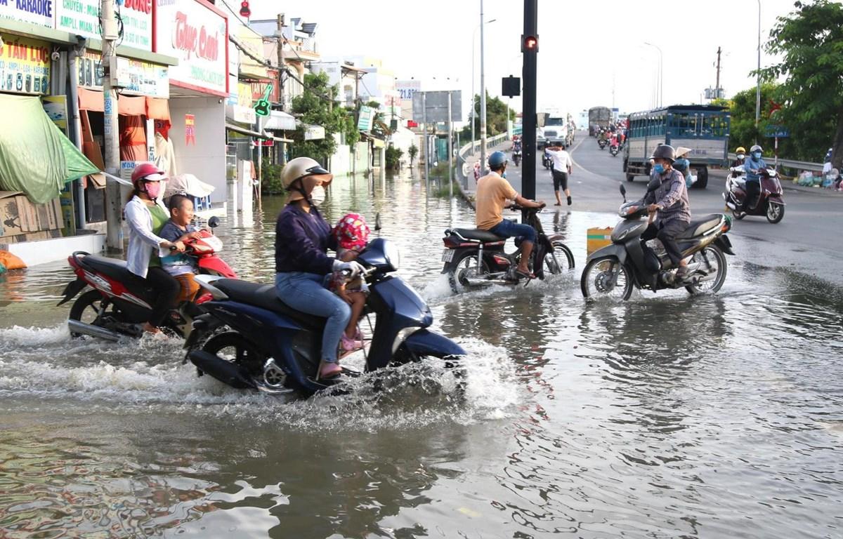 Ngập tại khu vực cầu Phú Xuân, tiếp giáp giữa huyện Nhà Bè và quận 7. (Ảnh: Trần Xuân Tình/TTXVN)