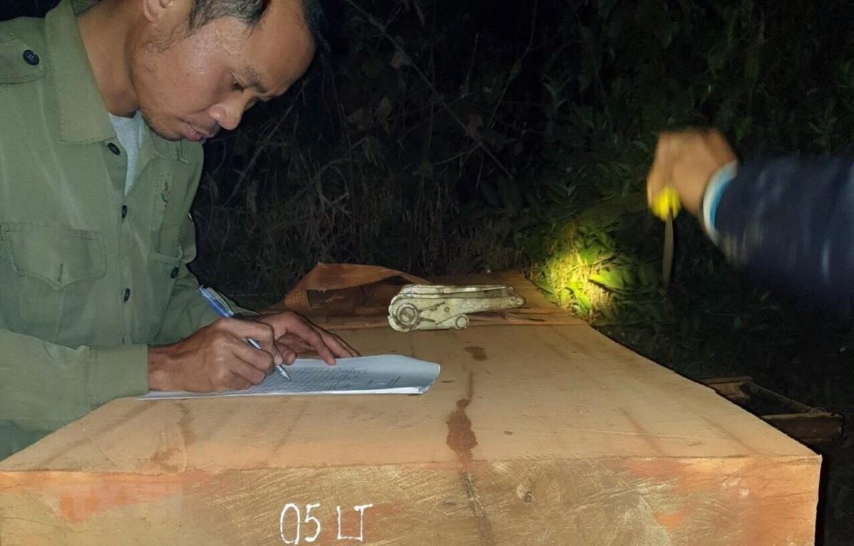 Tang vật của vụ phát hiện chở gỗ tại tiểu khu 258 xã Đăk Tơ Kan huyện Tumơrông sáng 5/3. (Ảnh: TTXVN phát)