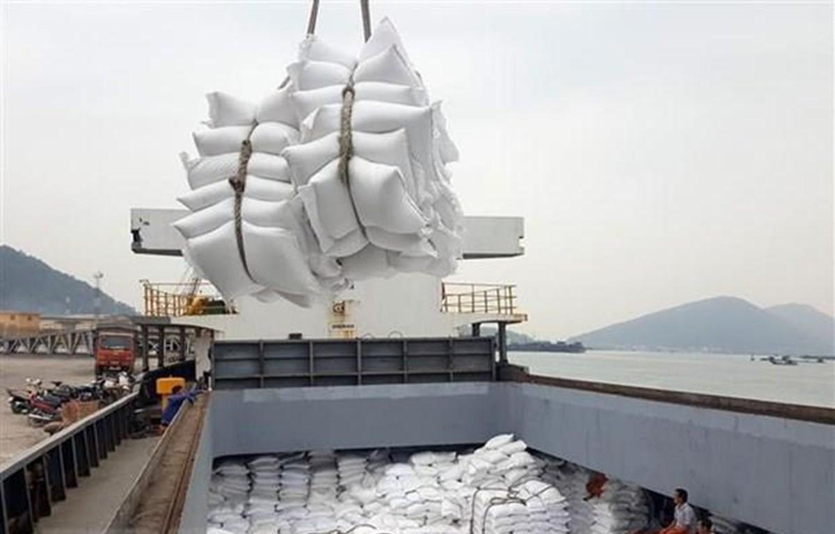 Bốc xếp gạo xuất khẩu tại cảng Cửa Lò (Nghệ An). (Ảnh: Danh Lam/TTXVN)