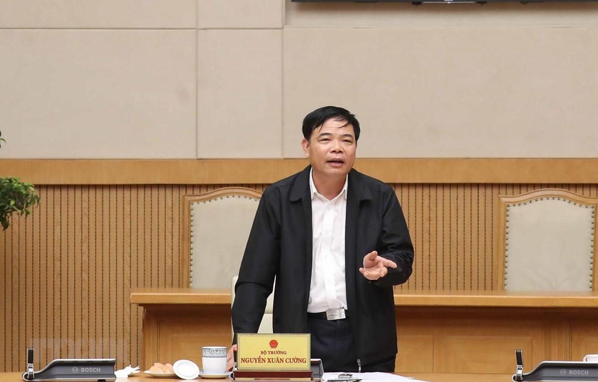 Bộ trưởng Bộ Nông nghiệp và Phát triển Nông thôn Nguyên Xuân Cường. (Ảnh: Thống Nhất/TTXVN)