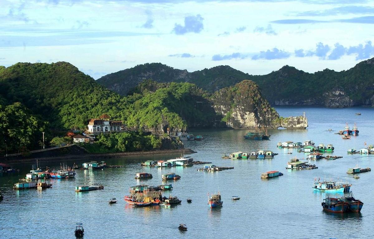Quần đảo Cát Bà thuộc huyện đảo Cát Hải, thành phố Hải Phòng đã được UNESCO công nhận là khu dự trữ sinh quyển thế giới, mỗi năm thu hút hàng triệu lượt khách trong nước và quốc tế thăm quan, nghỉ dưỡng. (Ảnh: An Đăng/TTXVN)