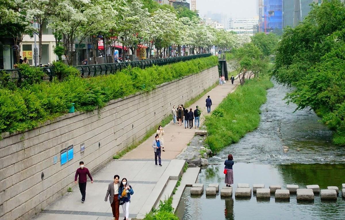 Người dân di chuyển trên đường phố tại Seoul, Hàn Quốc ngày 10/5 vừa qua. (Ảnh: THX/TTXVN)