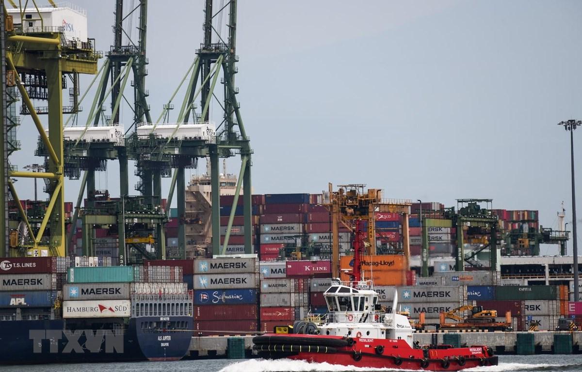 Tàu hàng neo đậu tại cảng ở Singapore, ngày 18/5 vừa qua. (Ảnh: AFP/TTXVN)