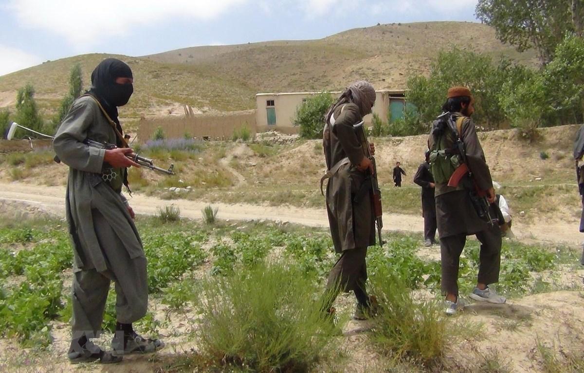 Các tay súng Taliban tại một khu vực ở tỉnh Paktia, Afghanistan. (Ảnh: AFP/TTXVN)