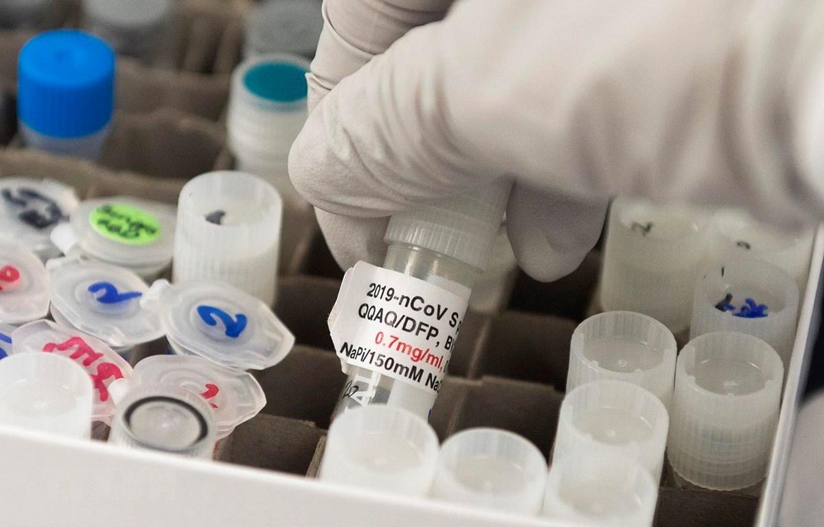 Vắcxin ngừa COVID-19 được nghiên cứu tại phòng thí nghiệm ở Rockville, Maryland, Mỹ. (Ảnh: AFP/TTXVN)