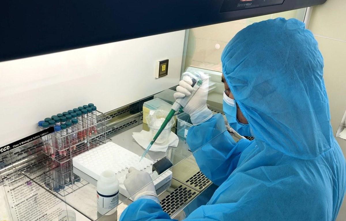 Cán bộ Trung tâm Kiểm soát bệnh tật tỉnh Quảng Ninh làm mẫu xét nghiệm bằng phương pháp PCR. (Ảnh: TTXVN phát)