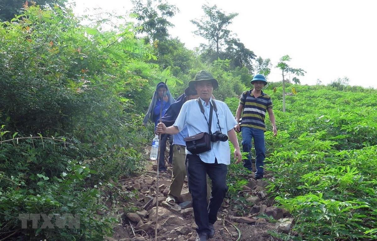 Nhóm phóng viên được công an xã dẫn đường đến nơi rừng bị chặt phá cách trung tâm xã Phú Mỡ 4km. (Ảnh: Xuân Triệu/TTXVN)