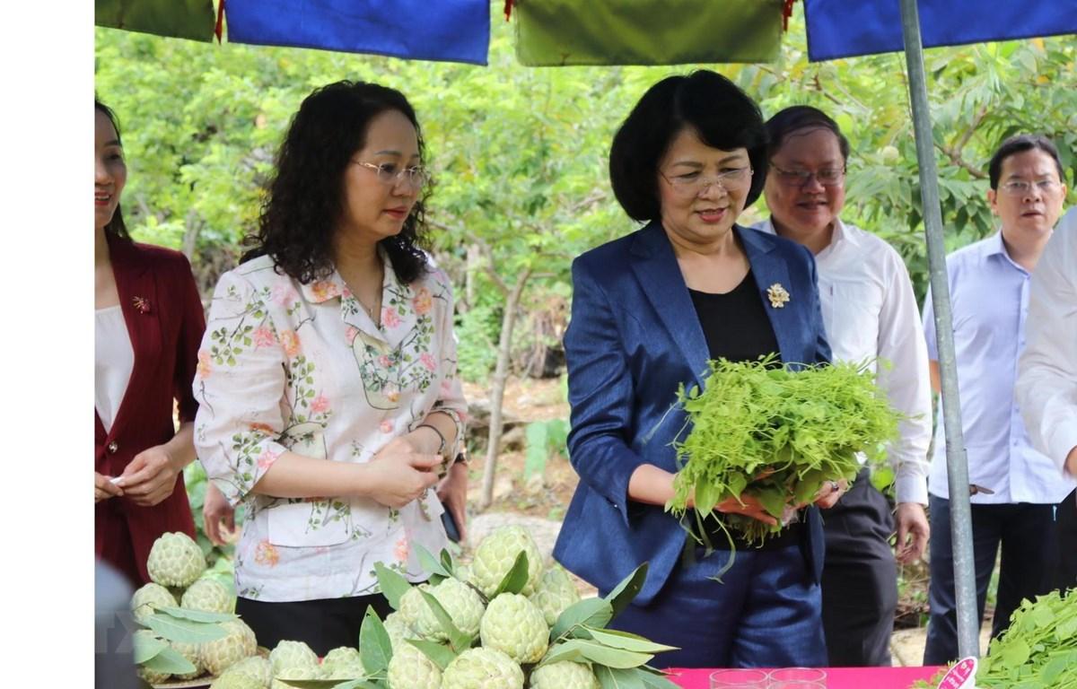 Phó Chủ tịch nước Đặng Thị Ngọc Thịnh tham quan sản phẩm nông nghiệp của huyện Chi Lăng, Lạng Sơn. (Ảnh: Quang Duy/TTXVN)
