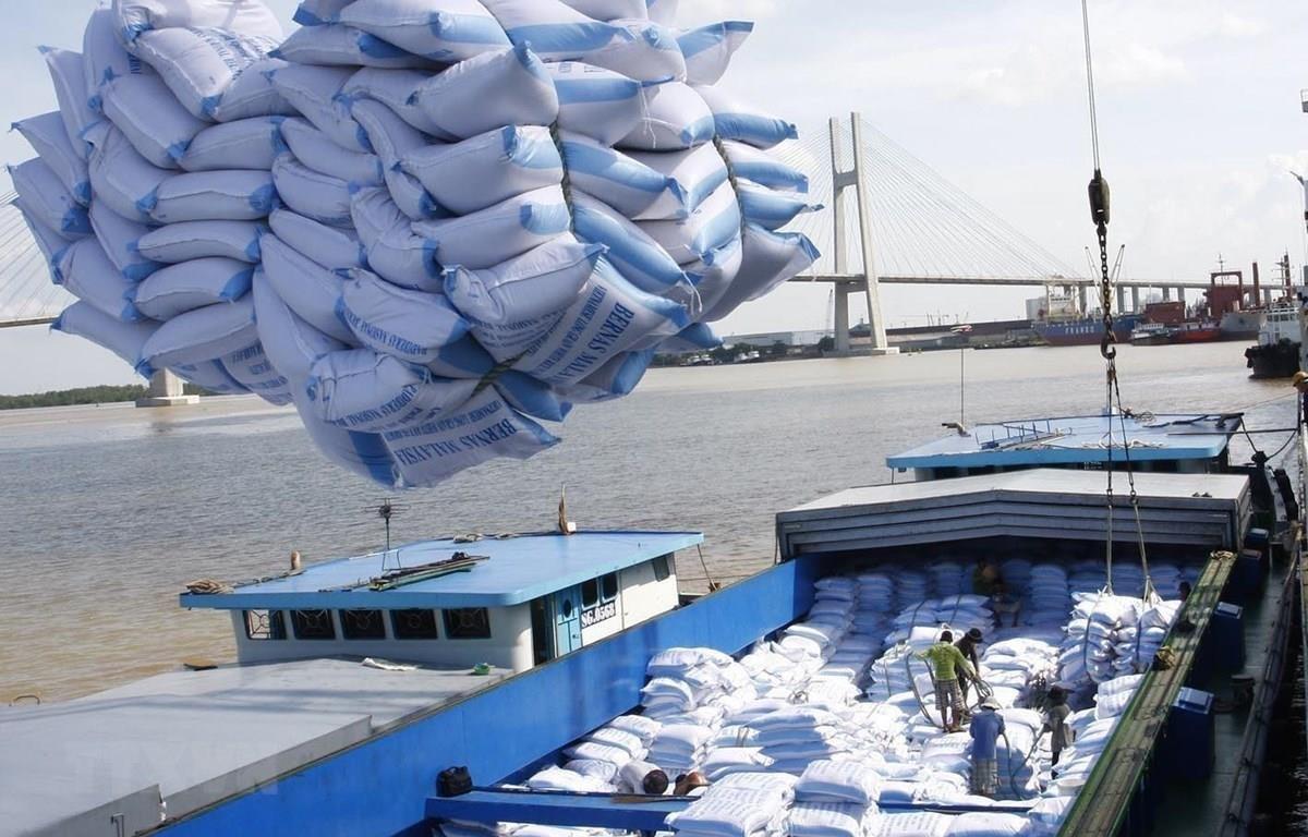 Bốc xếp gạo xuất khẩu sang tại cảng Sài Gòn. (Ảnh: TTXVN)