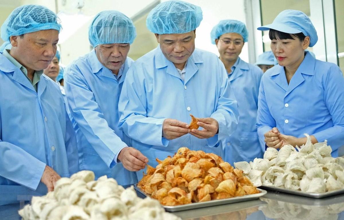 Bộ trưởng Nguyễn Xuân Cường và đoàn công tác đến thăm nhà máy chế biến yến sào đặc sản của tỉnh Khánh Hòa. (Ảnh: Nguyễn Dũng/TTXVN)
