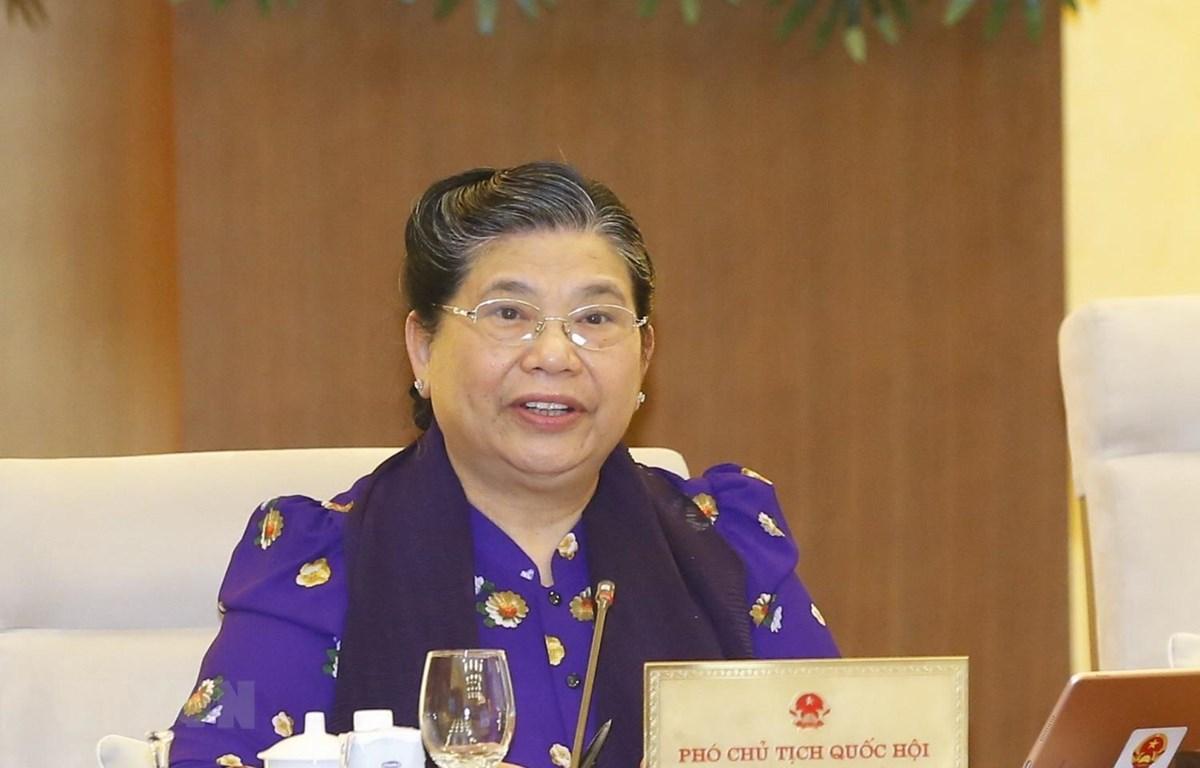 Phó Chủ tịch Thường trực Quốc hội Tòng Thị Phóng phát biểu. (Ảnh: Doãn Tấn/TTXVN)