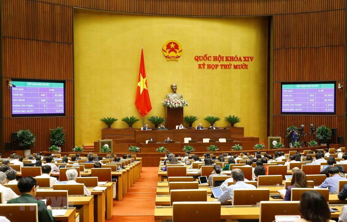 Quốc hội biểu quyết thông qua Luật sửa đổi, bổ sung một số điều của Luật Xử lý vi phạm hành chính. (Ảnh: Doãn Tấn/TTXVN)