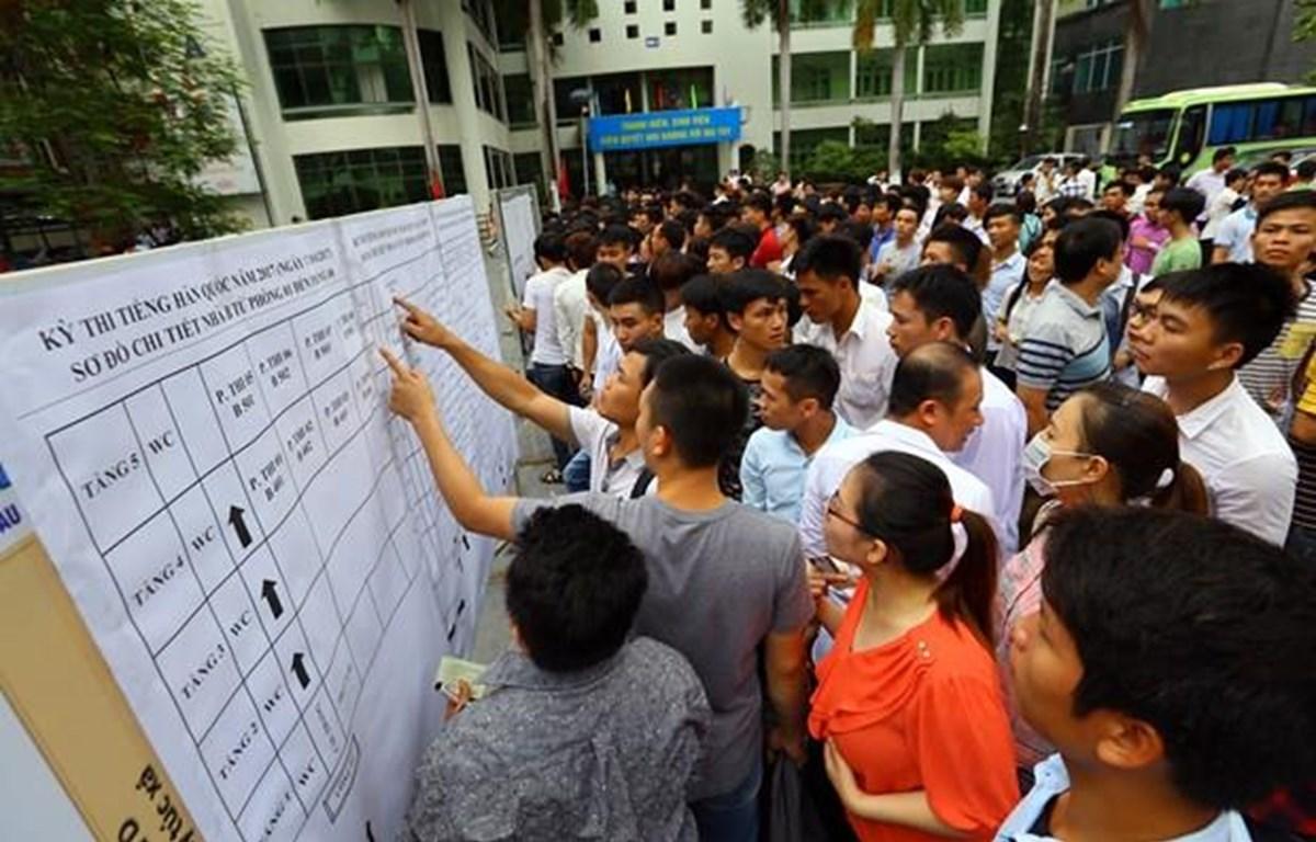 Người lao động xem danh sách thi tiếng Hàn để sang Hàn Quốc làm việc. (Ảnh: Hồng Kiều/Vietnam+)