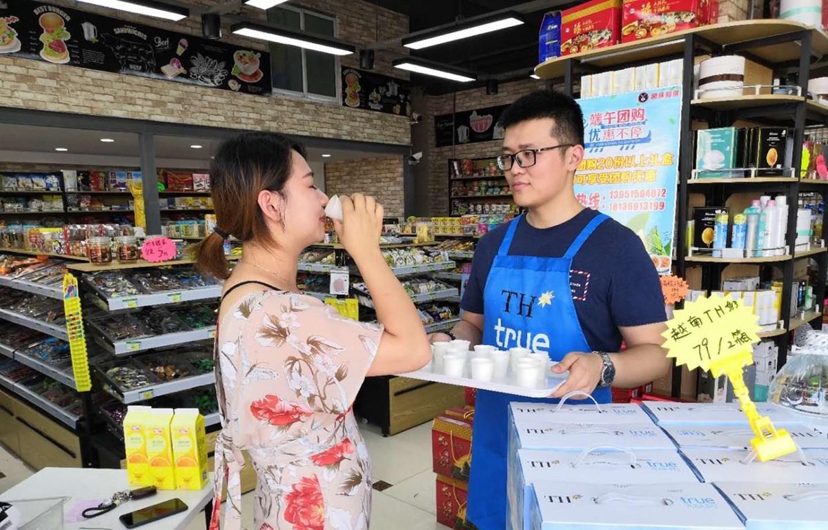 Sản phẩm sữa của Việt Nam lần đầu tiên được bày bán tại Trung Quốc. (Nguồn: TH Milk)