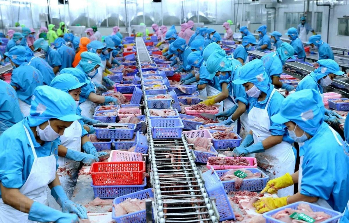 Cả doanh nghiệp và người lao động tại Việt Nam sẽ cảm nhận được rõ ràng và sâu sắc hơn những tác động của một nền thương mại toàn cầu đang bị thu hẹp lại. (Ảnh minh hoạ: TTXVN)