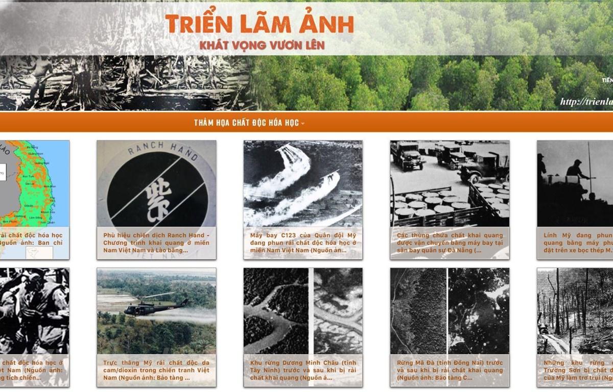 """Triển lãm ảnh """"Khát vọng vươn lên"""" được thực hiện trực tuyến trên địa chỉ website trienlamdacam.vn. (Ảnh: PV/Vietnam+)"""