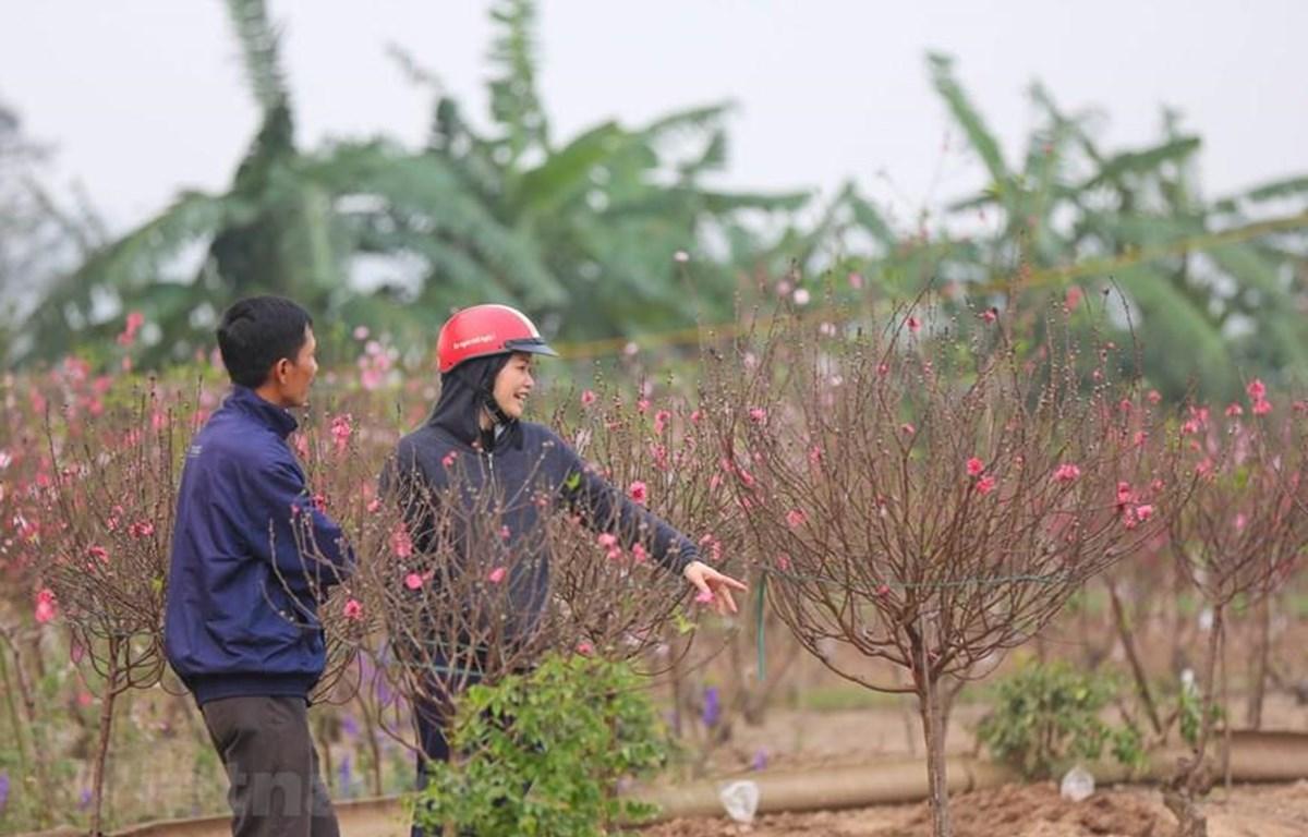 Ảnh minh hoạ: PV/Vietnam+