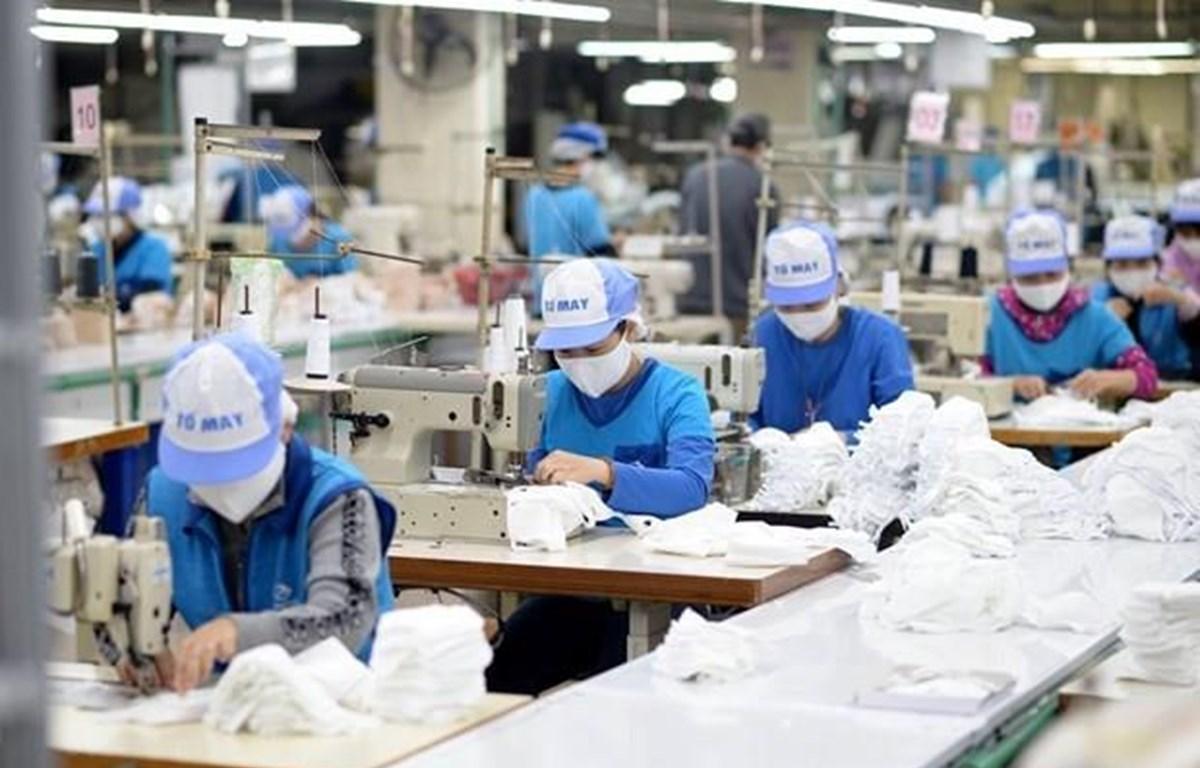 Ngành dệt may được dự báo sẽ tăng nhu cầu tuyển dụng trong quý 4. (Ảnh minh hoạ: Đức Duy/Vietnam+)