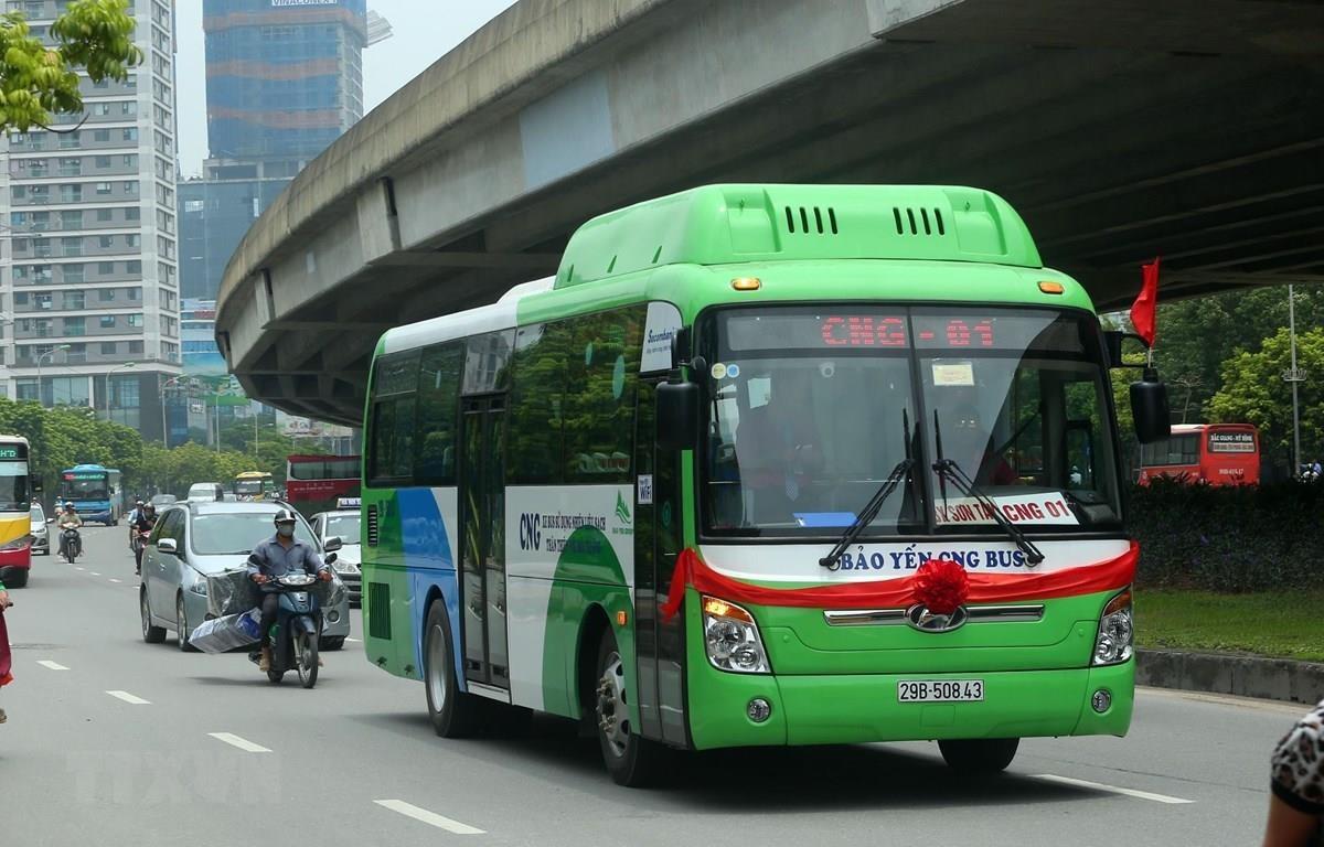 Hà Nội đưa các tuyến xe buýt dùng nhiên liệu sạch vào sử dụng. (Ảnh minh họa: Huy Hùng/TTXVN)