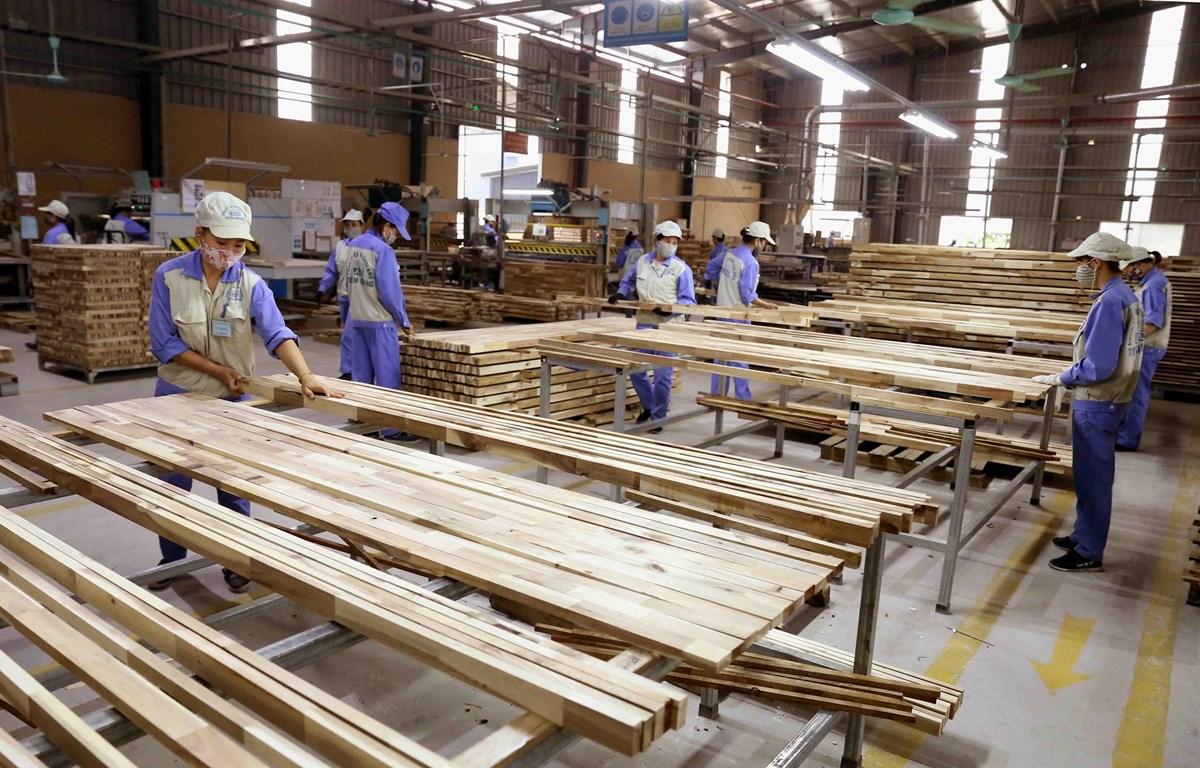 Xuất khẩu gỗ bị ảnh hưởng do dịch Covid-19 (Ảnh: Vũ Sinh/TTXVN)