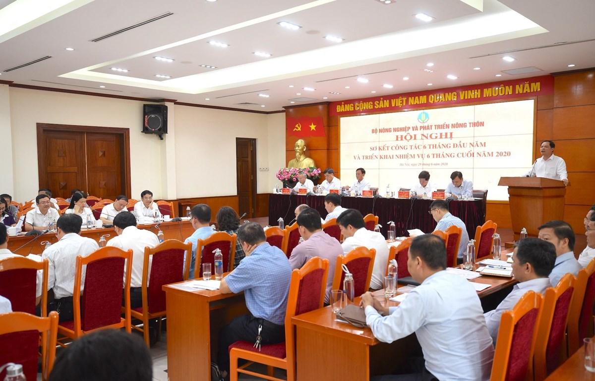Bộ Nông nghiệp và Phát triển nông thôn tổ chức hội nghị sơ kết 6 tháng đầu năm 2020 (Ảnh: Bộ Nông nghiệp và Phát triển nông thôn cung cấp)