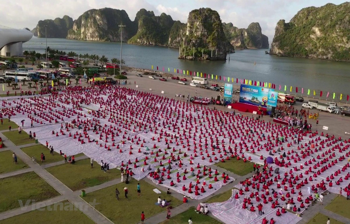 Hàng nghìn người tập Yoga tại Vịnh Hạ Long nhân Ngày Quốc tế Yoga năm 2020. (Ảnh: Đại sứ quán Ấn Độ)