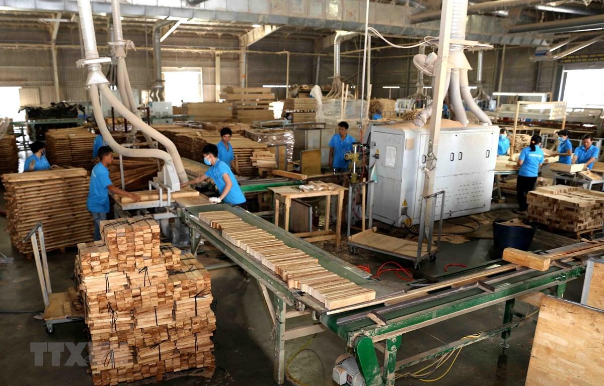 Sản xuất, chế biến gỗ tại Công ty trách nhiệm hữu hạn khai thác, chế biến lâm sản Đà Lạt (Lâm Đồng). (Ảnh: Vũ Sinh/TTXVN)