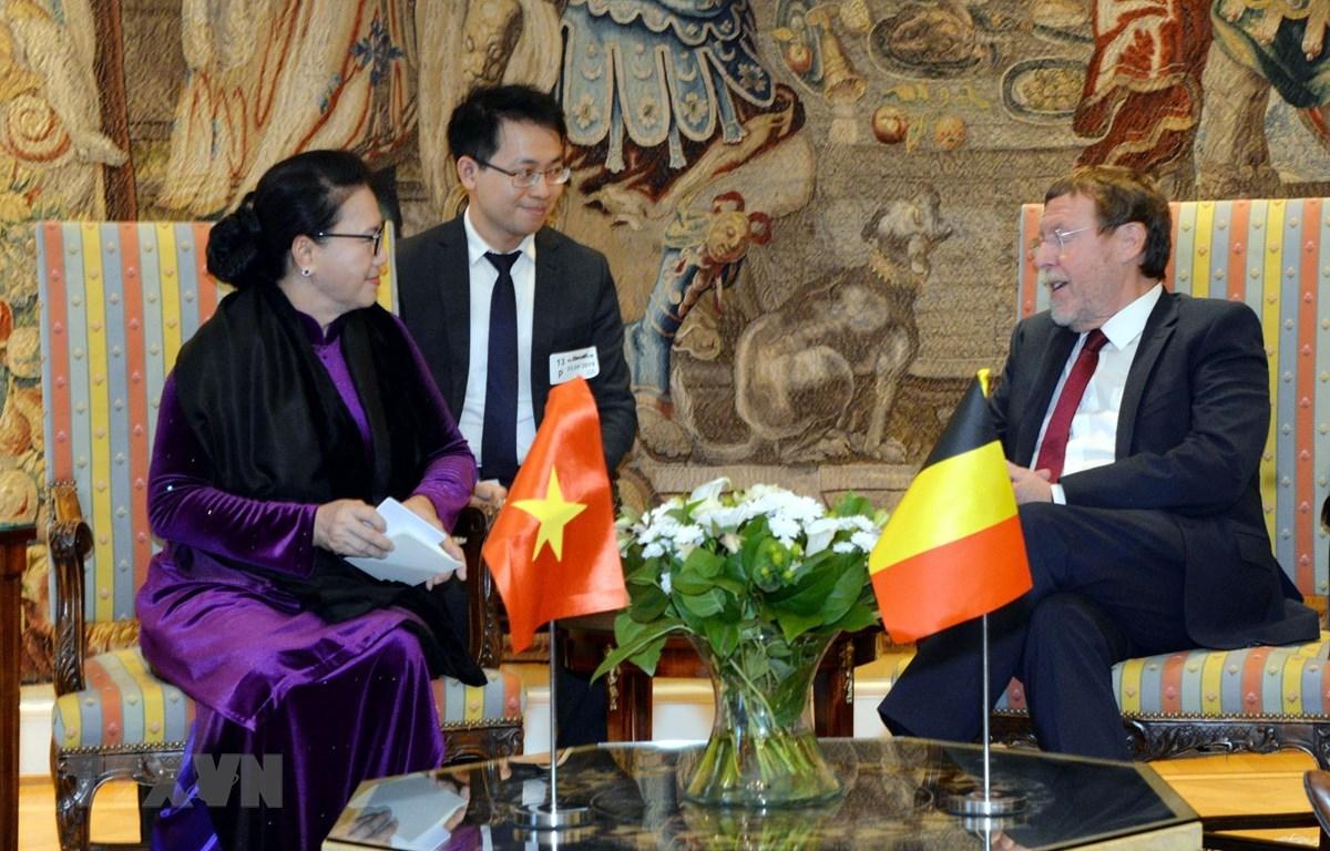 Chủ tịch Quốc hội Nguyễn Thị Kim Ngân hội kiến với Chủ tịch Hạ viện Bỉ Siegfried Bracke. (Ảnh: Trọng Đức/TTXVN)