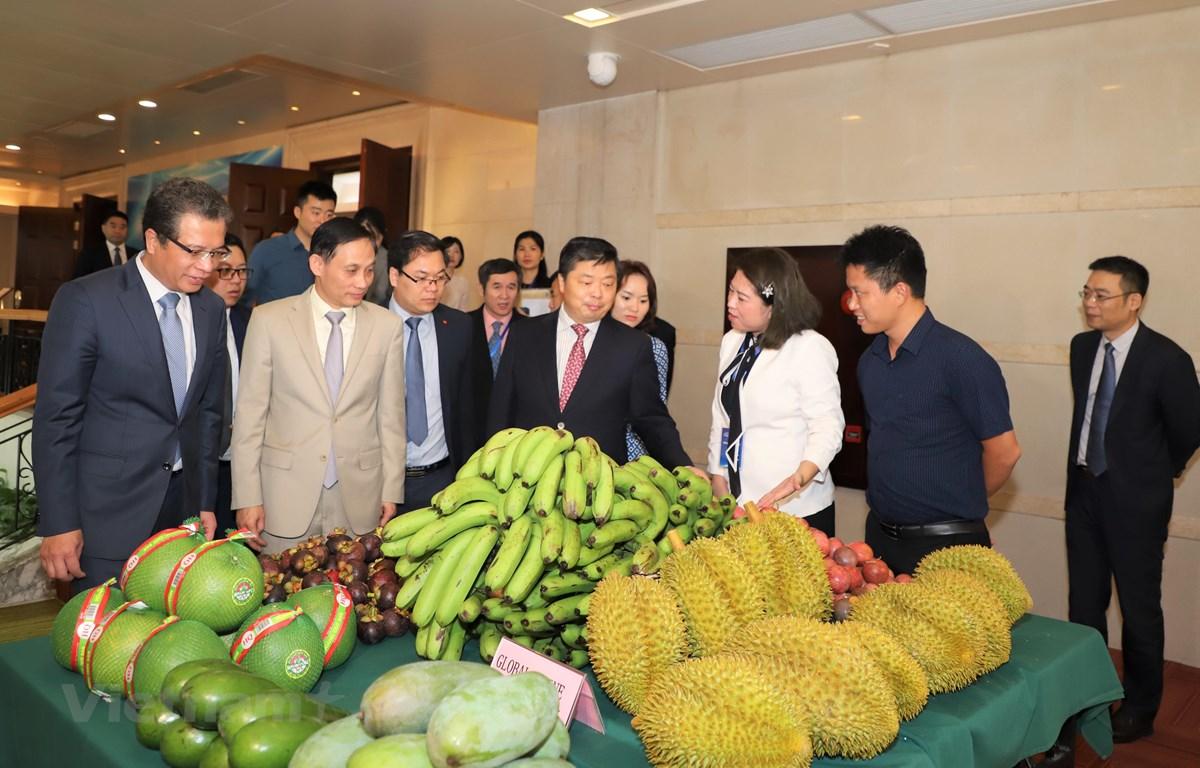 Gian hàng nông sản của Việt nam bên lề Diễn đàn. (Ảnh: Xuân Tuấn/Vietnam+)