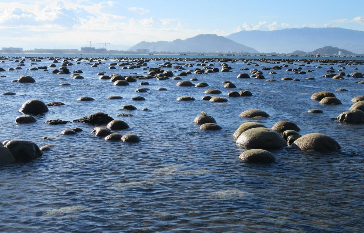 Khi thủy triều rút, bãi rạn san hô dần nổi lên trên mặt nước tạo nên cảnh tượng tuyệt đẹp. (Ảnh: Nguyễn Thành/TTXVN)