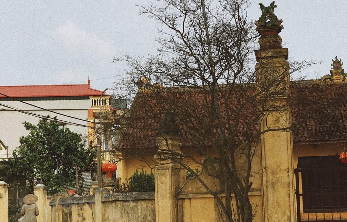 Những ngôi nhà tại làng Cựu là sự giao thoa giữa hai phong cách Á-Âu, tráng lệ có, bình dân có; sự hào hoa phố xá, yên bình kết hợp hài hòa. (Ảnh: PV/Vietnam+)