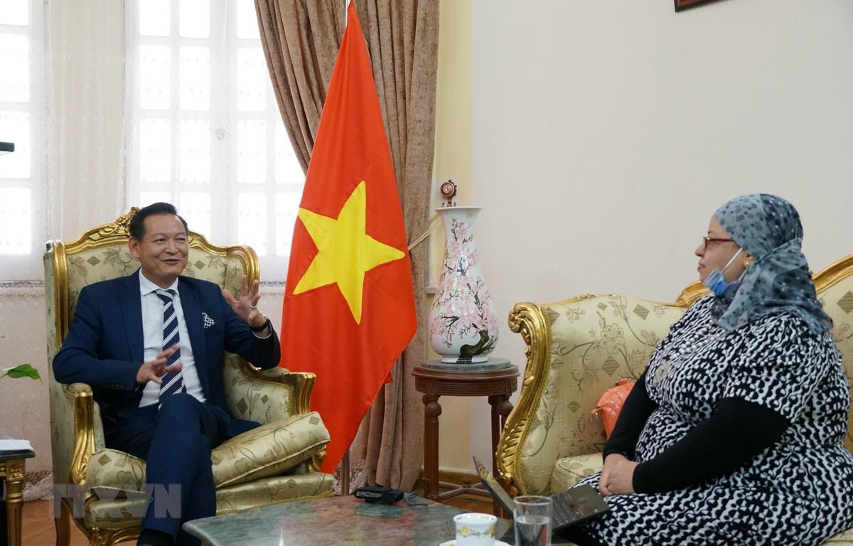Đại sứ Trần Thành Công trả lời phỏng vấn nhà báo Raunaa Al-Masry của kênh truyền hình Nile Cultural. (Ảnh: Anh Tuấn/TTXVN)