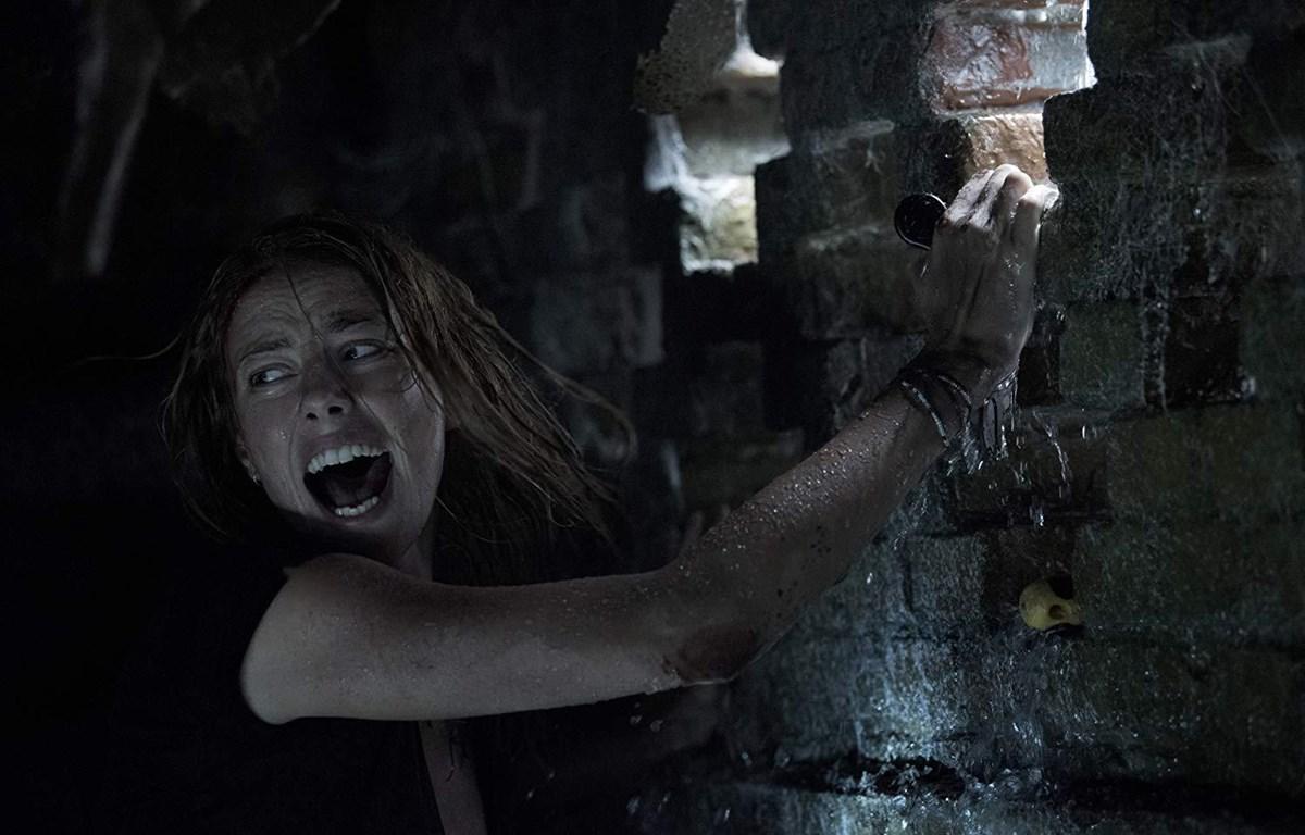 ''Crawl'' tung trailer giới thiệu loài cá sấs khổng lồ. (Nguồn: IMDB)