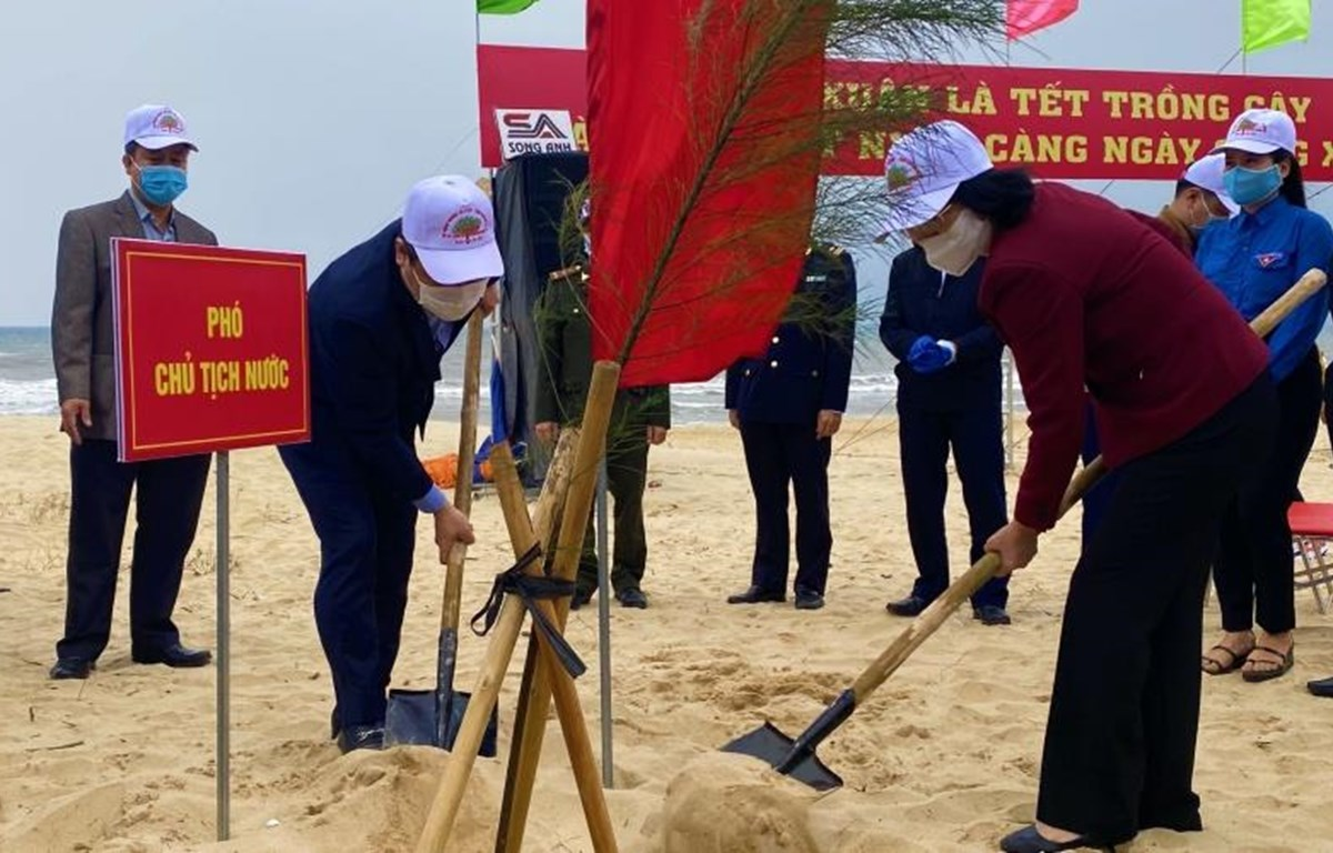 Phó Chủ tịch nước Đặng Thị Ngọc Thịnh trồng cây đầu Xuân Tân Sửu tại Quảng Bình. (Ảnh: Nhân dân)