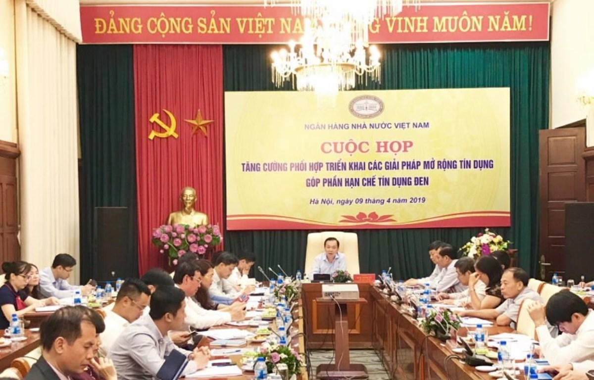 Các đại biểu tại cuộc họp. (Ảnh: T.H/Vietnam+)