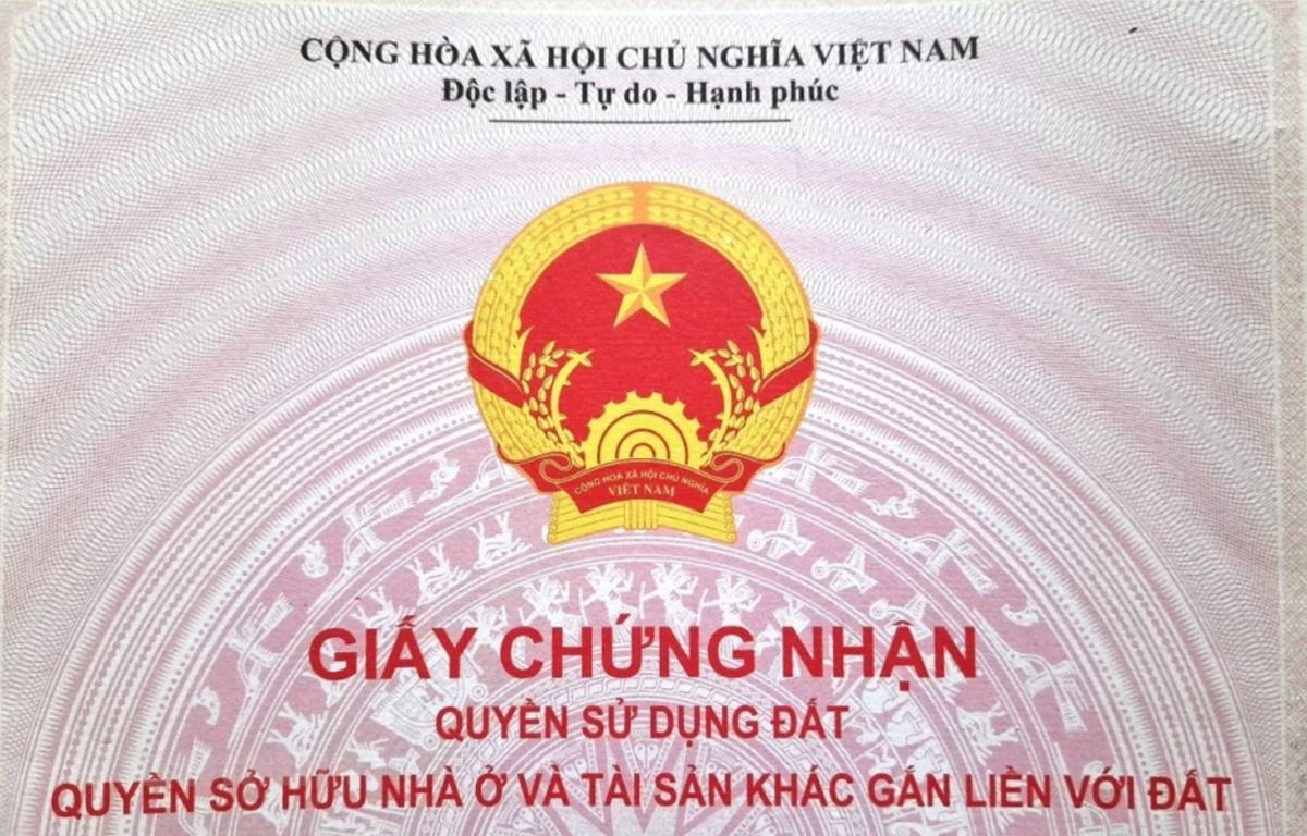 Ảnh minh họa. (Nguồn: Hùng Võ/Vietnam+)