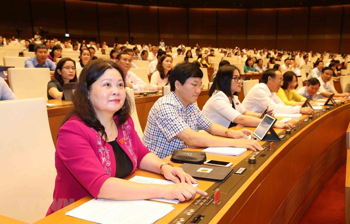 Các đại biểu Quốc hội tham gia một phiên họp. (Ảnh: Phương Hoa/TTXVN)