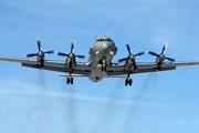 [Video] Nga tìm thấy chiếc máy bay quân sự Il-20 bị bắn rơi