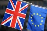 Anh yêu cầu EU đưa ra đề xuất phá vỡ thế bế tắc Brexit