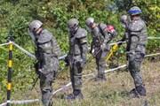 Triều Tiên gỡ bỏ hàng trăm quả mìn tại làng đình chiến Panmunjom
